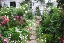 sunny gardens / by Kristen Ayers