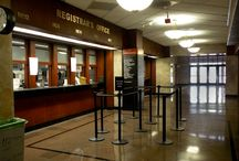 Educated Stanchions / by Pro Stanchions