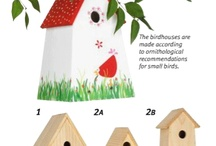 Birdhouses / by Margaret Brumfield