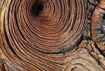 Weathered Wood / by Linda Meleyal