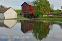 Amish Living and Culture / Discover how the Amish live and their beliefs! / by Donnas Premier Lodging