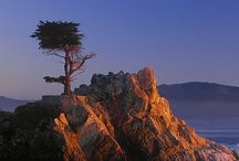 Pebble Beach, Carmel & Wine Country / by Kathy Hopkins