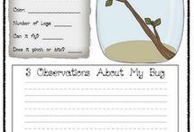 2nd Grade Unit activities / by Erin Spence