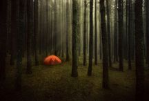 Setting up camp / by Megan Posein