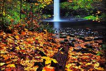 Portland To Do List / by xoxoLoveLola