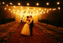 Wedding Services / A list of folks who provide wedding services to the bridal couple, wedding photography, wedding planners, wedding cake bakeries, florists, dj's, bands, etc. / by Wedding Bedazzle