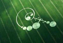 Crop circles / by Kris Ebersold