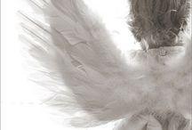 Angels/ Há anjos em tudo o que eu vejo. / by Papel de Presente Papelaria