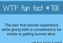 Fun facts// good to know / by Lindsey Wiseman