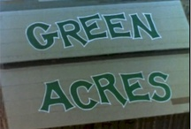 Green Acres  / by Tbr62