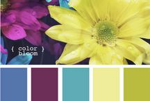 Wildflower/Secret Garden Party / by Katie {Sweet Rose Studio}