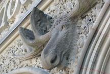 Carvings / Sculptures / by Canadian Museum of Nature - Musée canadien de la nature