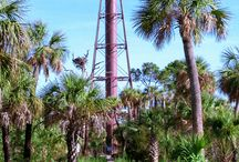 Lighthouses at Florida State Parks / Lighthouses serves as beacons to mariners and are enjoyed as historic features. / by Florida State Parks