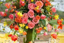 Flowers  / by Patricia Herron