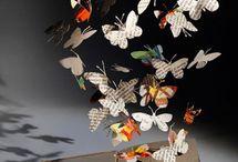 Butterflies / by Meg Miller