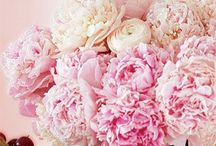 Wedding Things / by Jennifer Black