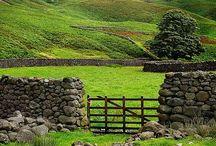 Ireland / by Carolyn Vagts