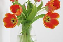 Spring Decorating / by ScentsationalWax|Scentsy Wickless Candle
