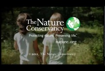 Connecting Kids & Nature / Need to come up with some ideas of what to do with your kids in nature? Visit naturerocks.org / by Nature Rocks