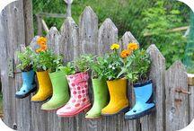 Gardening / by Becky Bell