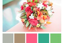 CT's Color Inspiration / Do you love color? So do I. Here I will show you a whole bunch of color combos and palettes to help you create wonderful things! / by Christin Thomas
