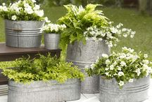 Gardening Ideas And Places To Go / by Heather Mcguire