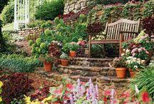 Garden Ideas / by Jules Savage Kaminski