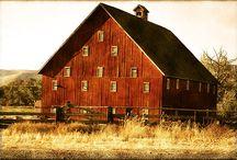 Barns / by Judy Lykins