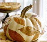 Pumpkin Everything / by Rachael Nodes