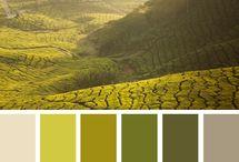 Spectrum / A celebration of color  / by Lisa Haller