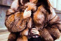 Fabulous Furs / by Susie Andersen