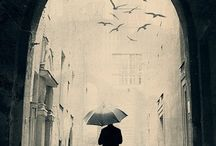 Umbrellas / by Kim Andersen