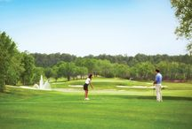 Fore! / Hitting the Links at Four Seasons Orlando and Beyond! / by Four Seasons Resort Orlando