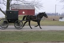 Amish ways / by Cindy Uecker