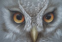 """""""Owl always love you"""" / by Patricia Young"""