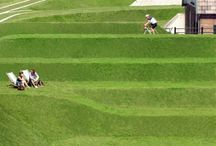 Landscape architecture / by Betts Montague