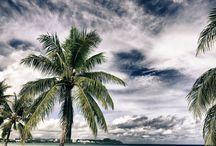 Guam / by Amanda Baker-Anderson