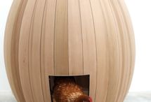 Coops / Who doesn't love fresh eggs!? / by Jodi K