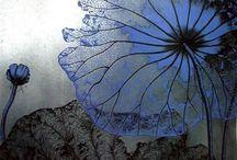 blue and ... / by Alyn Carlson