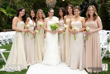 Wedding dresses / accessories / by Ashbrook Estate