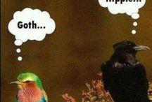Funny / by Lisa Seethaler