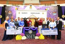 2013 Memories / by World Dairy Expo