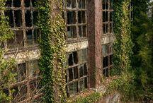 Abandoned,  Forgotten & Returned to Nature / by Miranda Madison