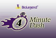 4 Minute Dash / This video reviews the latest new things going on at BioLegend.  Dr. Dzung Nguyen talks about the most recent new products, blogs, podcasts, promotions, and other happenings at BioLegend. / by BioLegend