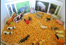 Kids - Farm / by Ginny J
