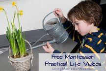 Montessori / by Katie @ Gift of Curiosity