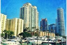 Best of Miami / by Aviv Lichtigstein