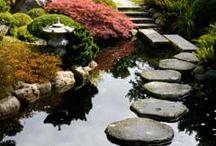Garden & Yard Ideas / by Christina Murphy