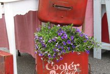 Creative Gardening / by Beth Ellsmere