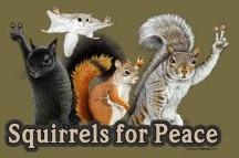 squirrel.squirrel.acorn. / by Jamie McCraren